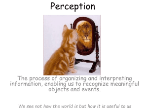 Perception PPT