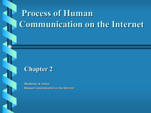 Process of Human Communication on the Internet