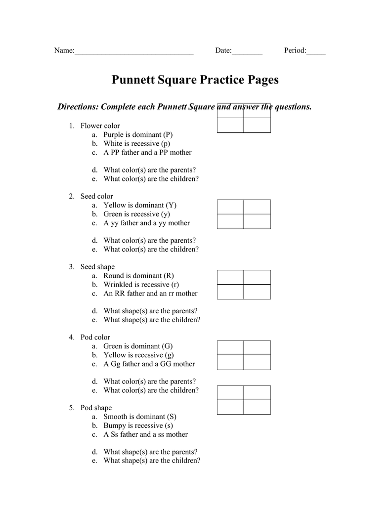Punnett Square Practice Pages Pregitzersninjascienceclasses
