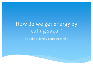 How do we get energy by eating sugar?