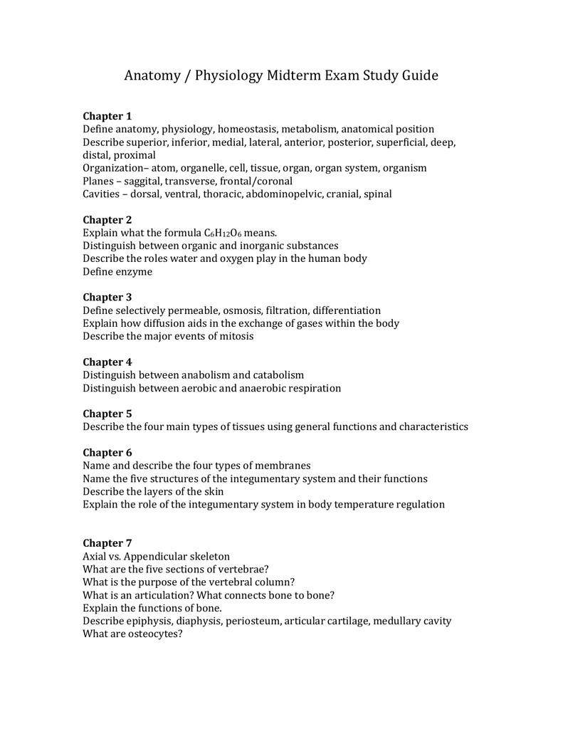 Contemporáneo Anatomy And Physiology Chapter 5 Study Guide Galería ...