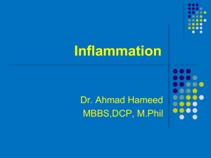 Inflammation 4