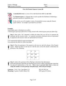 B6 Fun with Punnet Squares Lesson - CIA-Biology-2011-2012