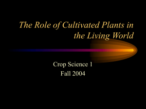 The Role of Cultivated Plants in the Living World