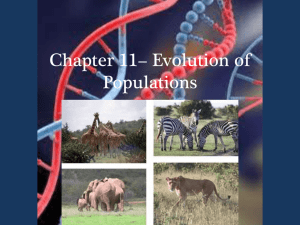 Chapter 11 - Evolution of Populations