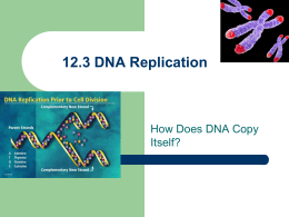 I have to write a Essay about dna any help ?