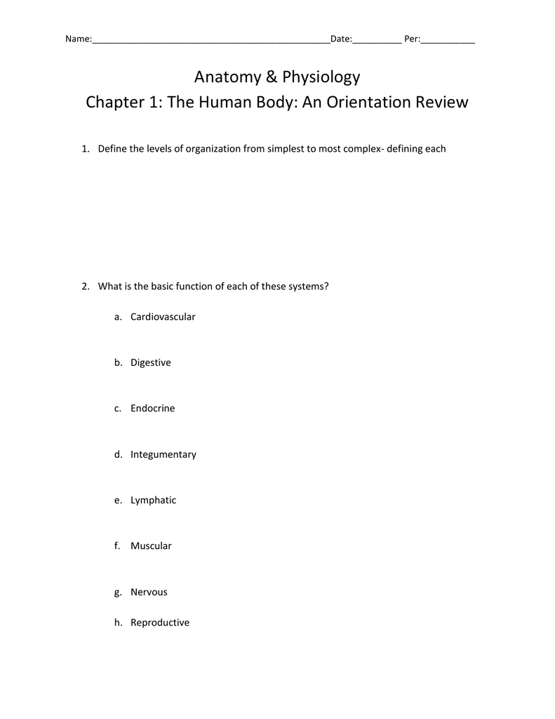 Fantástico Anatomy And Physiology Chapter 1 Study Guide Colección ...