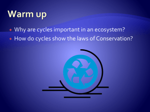 Cycles in an Ecosystem Notes
