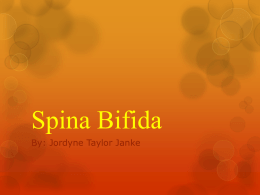 spina bifida research papers Spina bifida a type of birth defect that affects the skeletal system is spina bifida spina bifida is a nueral tube defect that occurs when the bones of the spine or the vertebrae do not form accurately around the spinal cord.