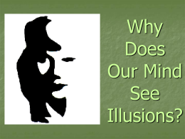 Why Does Our Mind See Illusions?