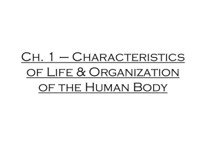 Ch. 1 * Characteristics of Life & Organization of the Human Body