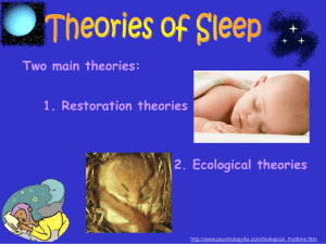 The Restoration Theory Of Sleep