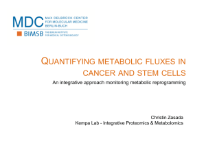 Quantifying metabolic fluxes in cancer and stem cells