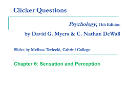 Sensation and Perception Chapter 6 PowerPoint