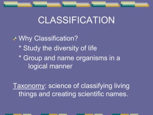 classification - Cobb Learning