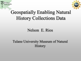 Nelson Rios - Tulane University Biodiversity Research Institute