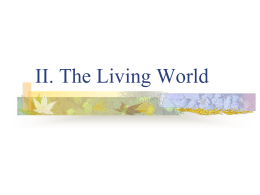 The Living World Notes