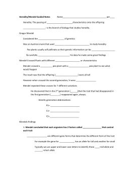 Mendelian Genetics Worksheet 11 3 Answer Key - worksheet patterns ...