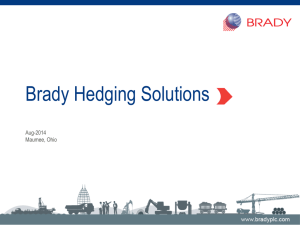 Brady Hedging Solutions