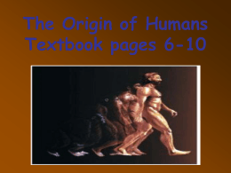 PPT: Origins of Man - HRSBSTAFF Home Page