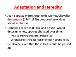 Lesson 2 - Adaptation and Heredity student notes