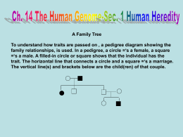 Ch. 14 The Human Genome-Section 3