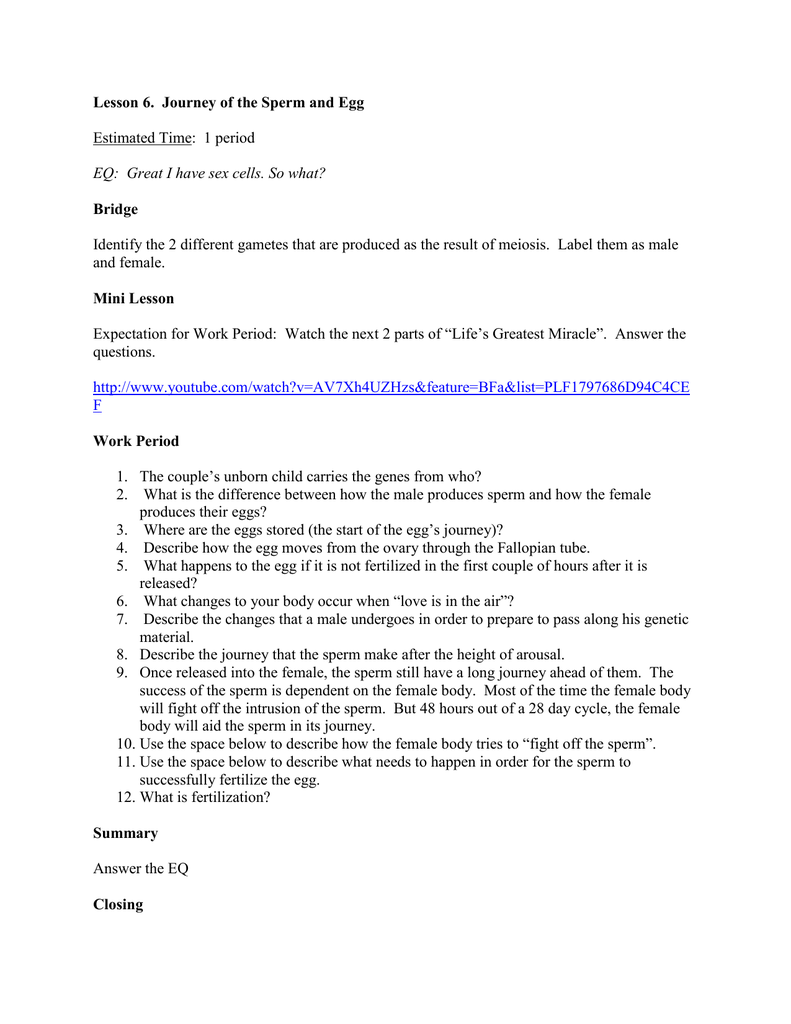 worksheet Miracle Of Life Video Worksheet Answers lesson plan