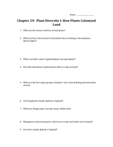 active reading ch 29 plant diversity wkst