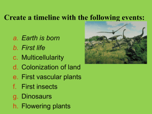 Plant land colonization PPT