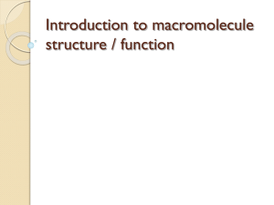 Macromolecules Concept Map Answers.Unit 2 Test Retake Review Sheet Cell Biology Answer Questions