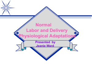 Normal Labor and Delivery Physiological Adaptations Presented by