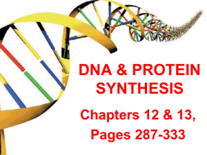 DNA Notes Part 1