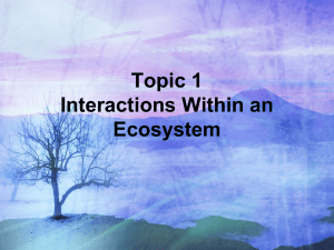 Topic 1 Interactions Within an Ecosystem(1)