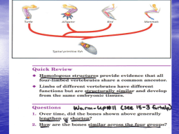 chapter 19 speciation essay Questions about evolution for students to discuss and write essays many of these questions are seen on the ap test or on unit exams students can work individually or in groups alternative assignments also included.