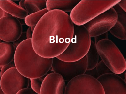 Blood Notes PPT