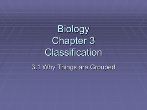 Standard Biology Chapter 3 Classification