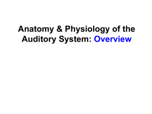 Anatomy & Physiology Overview