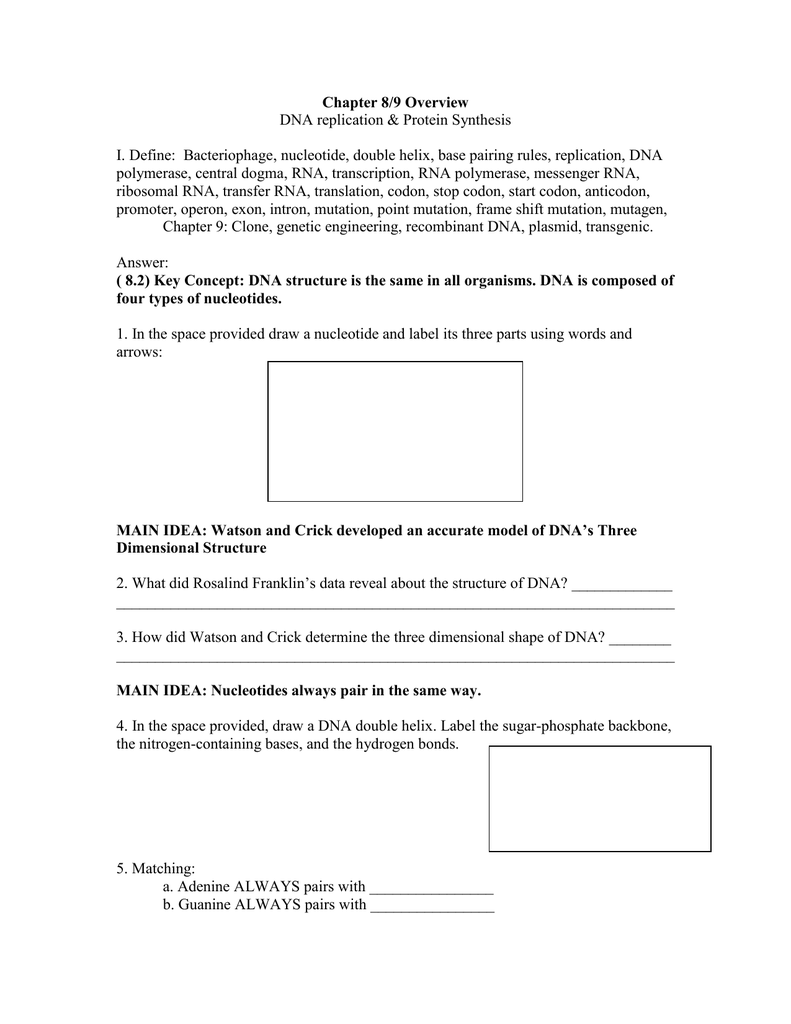worksheet Dna Replication Practice Worksheet Answers chapter 89 overview dna replication protein synthesis i define