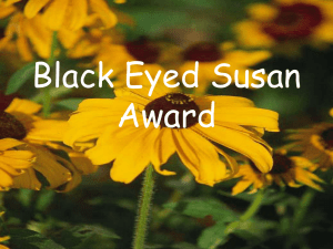 Black Eyed Susan Award - childrensyaliterature