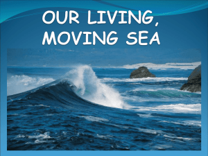 OUR LIVING, MOVING SEA
