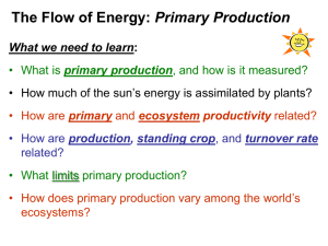 EnergyFlow_lecture20..