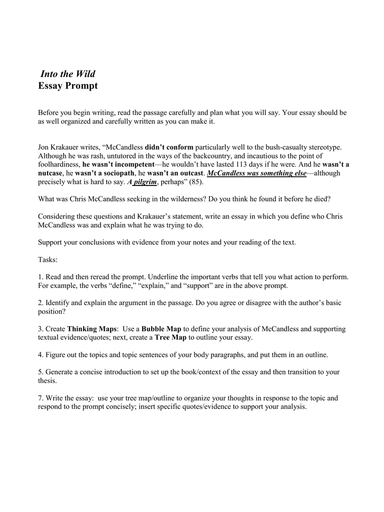 essay into wild Essay ideas, study questions and discussion topics based on important themes running throughout into the wild by jon krakauer great supplemental information for school essays and homework projects.