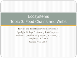 4.3 Food Chains and Webs
