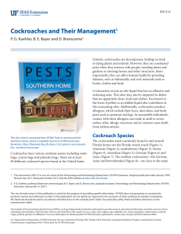 Cockroaches and Their Management 1