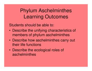 phylum aschelminthes ppt