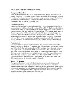 biology 1 exam 2 rh studylib net biology 101 final exam study guide biology 101 exam 2 study guide