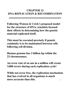 CHAPTER 12 DNA REPLICATION & RECOMBINATION Following Watson & Crick's proposed model