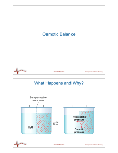 Osmotic Balance What Happens and Why? Bioengineering 6000 CV Physiology