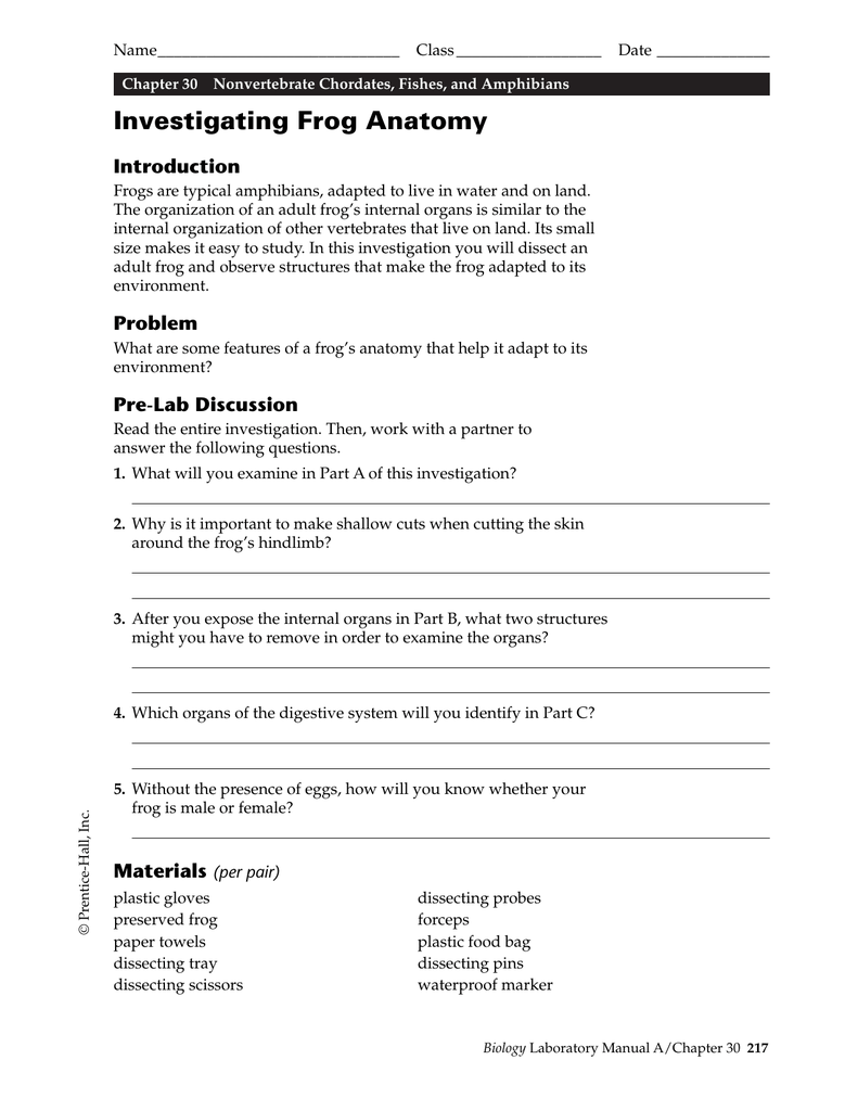 Investigating Frog Anatomy Introduction
