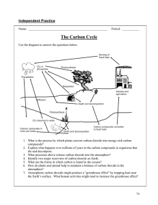 The Carbon Cycle Independent Practice